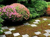 東福寺のサツキ