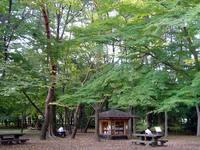 京都御苑20091015