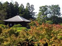 京都紅葉銀閣寺20091022