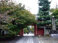 京都紅葉真如堂20091026