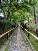 京都紅葉光悦寺20091026