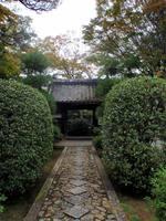 京都紅葉源光庵20091026