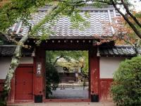 京都紅葉常照寺20091026