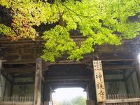 京都紅葉神護寺20091027