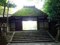 京都紅葉法然院20091029