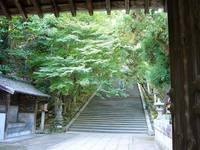 京都紅葉法輪寺20091029