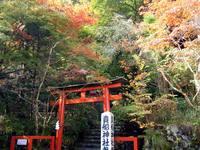 京都紅葉貴船神社20091030