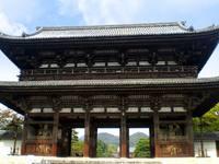 京都紅葉仁和寺20091105