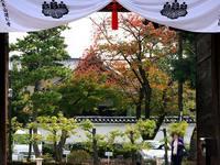 京都紅葉建仁寺20091106