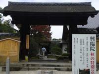 京都紅葉興臨院20091110