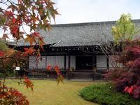 京都紅葉勧修寺20091111