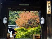 京都紅葉実相院20091112