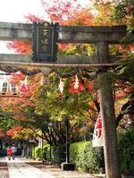 京都紅葉長岡天神20091113