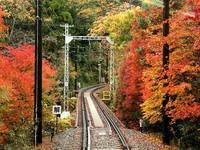 京都紅葉鞍馬寺20091116