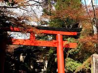 京都紅葉貴船神社20091116