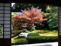 京都紅葉雲龍院20091116