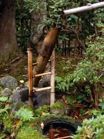 京都紅葉落柿舎