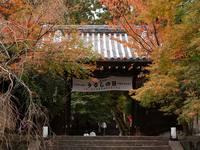 京都紅葉法輪寺20091116