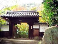京都紅葉善法律寺20091116
