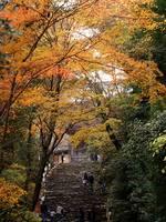 京都紅葉神護寺20091124