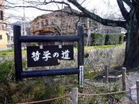 京都桜2010哲学の道