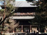 京都桜2010南禅寺
