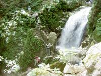 八淵の滝20100731-02.jpg