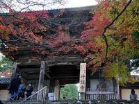 京都神護寺の紅葉