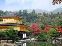 京都金閣寺の紅葉