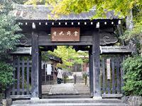 京都常寂光寺の紅葉