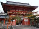 京都八坂神社の紅葉