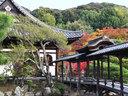 京都高台寺の紅葉