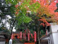 京都長岡天満宮の紅葉