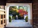 京都興聖寺の紅葉