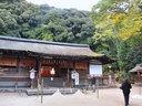 京都宇治上神社の紅葉