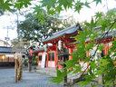 宇治神社の紅葉