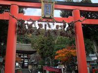 京都松尾大社の紅葉