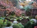京都宝泉院の紅葉