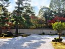 京都廬山寺の紅葉