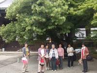 新日本婦人の会散策