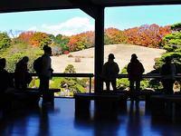 京都ハイクファミリー