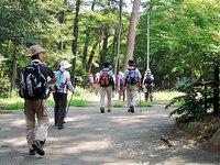 六甲森林浴の道