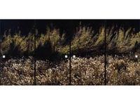 佐和賢爾写真展「法爾自然1・2」