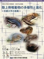 陸上脊椎動物の多様性と進化─京都大学の挑戦
