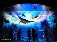 3Dプロジェクションマッピングアクアリウム・ファンタジー