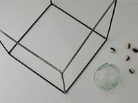 鳥山高史個展~四角とタネとガラス