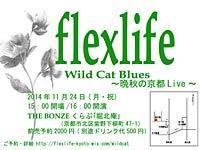Wild Cat Blues~秋のツアー 晩秋の京都Live