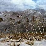 池田桂子展~書と絵画~四季の風景うつりゆく光と風と