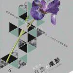 京都いけばなプレゼンテーション2017「展示会 自然と造形