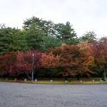 京都御苑【3】Kyoto Gyoen National Garden